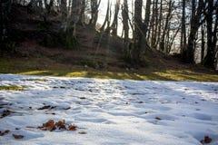 一个冬天风景的水平的看法与恶劣的雪的在Ital 免版税库存图片