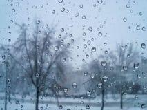 一个冬日 库存照片