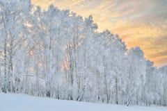 一个冷淡的冬天晚上的柔和的颜色在山的 库存照片