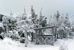 一个冷淡的冬天眺望台在石头和盆景自然庭院里  库存照片