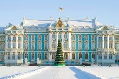 一个冷淡的1月下午的凯瑟琳宫殿 Tsarskoe Selo 免版税图库摄影