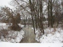 一个冷漠的池塘 免版税库存图片