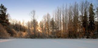 一个冷的1月早晨 库存照片