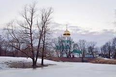 一个冻池塘的Fedorovskiy大教堂在s的Tsarskoe Selo 库存照片