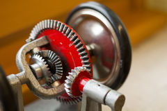 一个分速齿轮的模型 免版税图库摄影