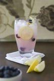 柠檬蓝莓致冷机 库存照片