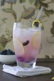 柠檬蓝莓致冷机 免版税库存图片