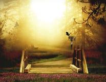 一个剧烈的森林场面有金黄发光的背景 免版税图库摄影