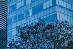 一个办公室和企业大厦的细节在墨西哥城 库存照片