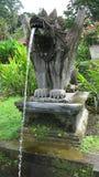 一个动物的石雕塑在储水箱边缘的 从呕吐入水的动物的嘴入水池 illus 免版税库存照片