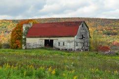 一个北部纽约山坡的美丽的老被风化的谷仓在秋天 图库摄影