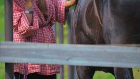 一个十几岁的女孩照顾在农场的马 股票录像