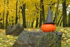 一个南瓜和一个黑巫婆帽子在一块大石头反对风景秋季公园 免版税库存照片