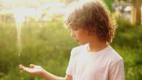 一个卷发的男孩的闭合的画象 男小学生站立在夏天雨下并且投入他的手对下落 温暖 股票视频