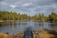一个历史的水道的一处美好的秋天风景运输的木材在湖之间 射线多云建筑使被拧紧的橡木天空塔木 免版税库存照片
