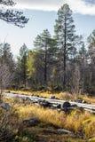 一个历史的水道的一处美好的秋天风景运输的木材在湖之间 射线多云建筑使被拧紧的橡木天空塔木 图库摄影
