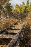 一个历史的水道的一处美好的秋天风景运输的木材在湖之间 射线多云建筑使被拧紧的橡木天空塔木 免版税库存图片
