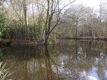 一个反射性湖 库存图片