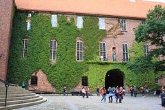 一个古老大厦在斯德哥尔摩使用了当市政厅 免版税库存照片