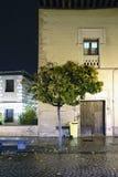 一个古老教会的门面有一棵树的在位于的前面 免版税库存照片