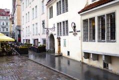 一个古老药房的大厦, 15世纪 塔林 免版税库存图片