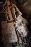 一个古老西藏吉祥人,护身符,一个佛教房子的卫兵:一条狗的头骨与被绘的眼睛的在木板条中,在l 免版税库存照片