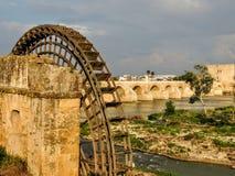 一个古老阿拉伯磨房的废墟在科多巴,安大路西亚,西班牙 免版税库存照片