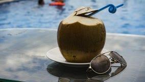 一个可口椰子在水池的一个好夏日 库存照片