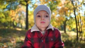 一个哀伤或不快乐的男孩的画象秋天公园的 影视素材