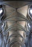 一个哥特式大教堂的天花板 库存照片