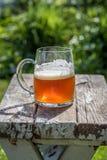 一个啤酒杯的特写镜头在老木台式的在阳光下 库存照片