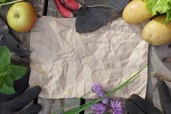 一个园艺工具和一片庄稼从庭院 您的文本的地方在中部一张纸的 免版税库存照片