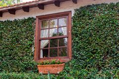 一个土气房子的强的绿色门面有窗口的在木制框架 免版税库存图片