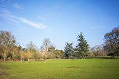 一个地方公园在冬天 免版税库存照片