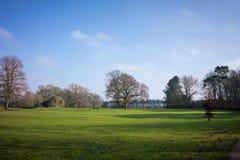 一个地方公园在冬天 库存图片