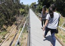 一个地方地标,云杉的街道吊桥,在圣地亚哥 免版税库存图片