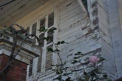 一个地方房子和玫瑰 免版税库存照片