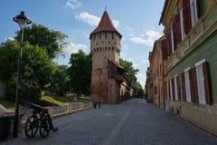 一个堡垒塔和一门大炮在Hermannstadt或锡比乌在特兰西瓦尼亚东欧罗马尼亚 免版税库存图片