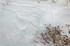 一个处女被雪包围住的领域 免版税库存图片