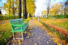 一个夏天在秋天的庭院和花瓶的全景有长凳的 库存照片