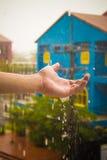 一个多雨早晨 作为水的时间 图库摄影