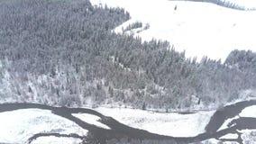一个多雪的森林、小山和小潮流在Tatra山,波兰的鸟瞰图 库存照片