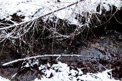 一个多雪的森林地板的背景与一条连续河的 库存图片