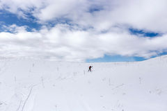 一个多雪的领域的滑雪者 免版税图库摄影