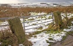 一个多雪的风景的看法 免版税库存照片