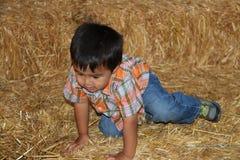 一个大包的年轻男孩干草 免版税库存照片