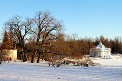 一个大湖在凯瑟琳公园在冬天 免版税库存照片