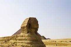 一个大狮身人面象在金字塔的背景中 免版税库存照片