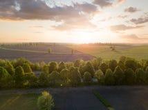 一个大领域的全景在日落的 从寄生虫的照片 库存图片
