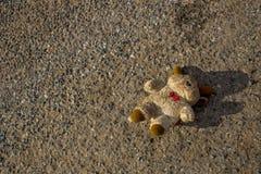 一个失去的熊玩偶在街道上跌倒和丢失 熊是肮脏和失去的它眼睛 库存照片